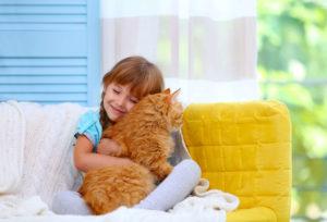 Терапия кошками