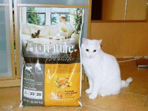 Холистик корм для кошек
